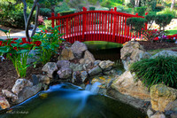 Japanese Bridge at the Langham